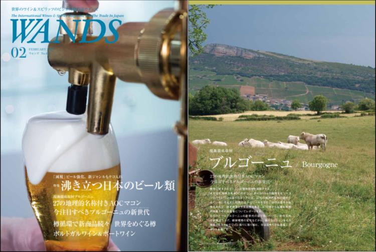 Magazine WANDS (japon) février 2020